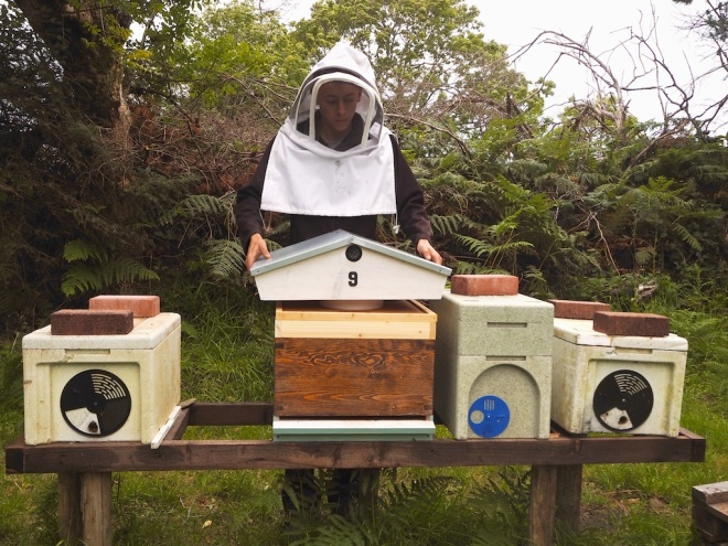 An Earagail Apiary, anthony gallagher honey, donegal honey